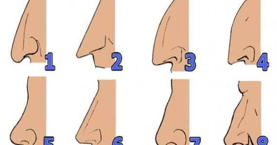 SHAPE OF YOUR NOSE REVEALS WHAT KIND OF PERSON YOU ARE: Find out who cheats and who will get rich