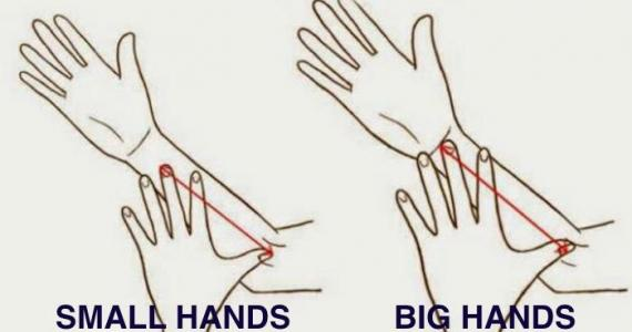 What does the length of your hands say about you?