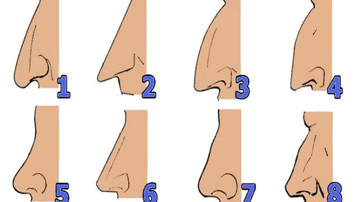 SHAPE OF YOUR NOSE REVEALS WHAT KIND OF PERSON YOU ARE: Find out who