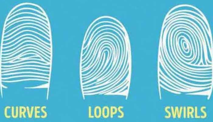 Look at your forefinger and determine what kind of a person you are: WHAT YOUR FINGERPRINTS ARE LIKE, THAT'S WHAT YOU ARE LIKE IN YOUR SOUL!