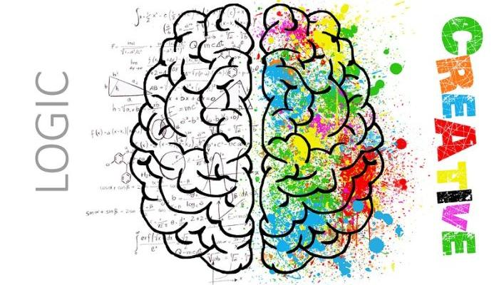 WHAT KIND OF BRAIN DO YOU HAVE, MALE OR FEMALE: Look at your fingers, compare them and learn something new about yourself!